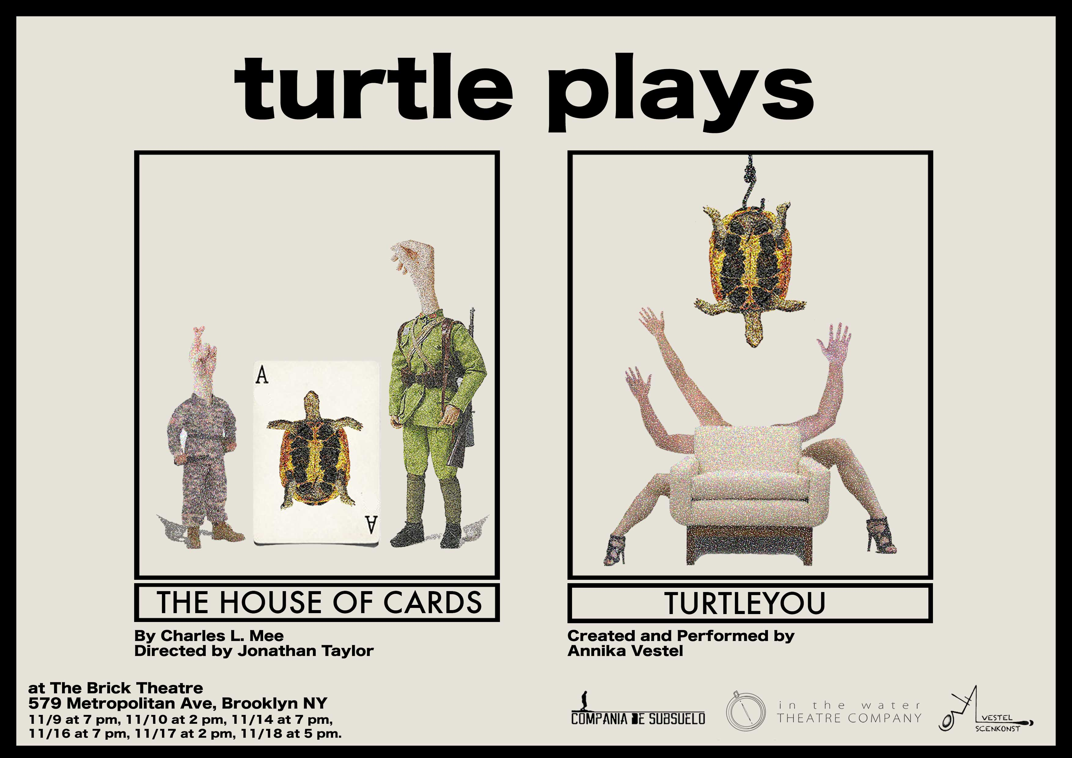 Turtle-Plays (1)